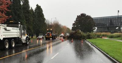 Windstorm hits Eugene