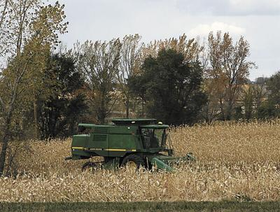 Area farmers finding good corn and soybean yields