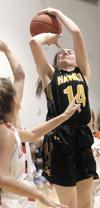 Hawks roll to first round win, Lady Raiders fall in opening round
