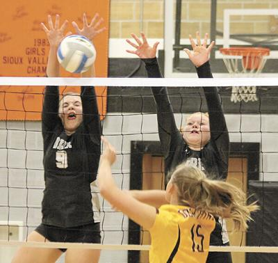 Deubrook downs Lady Raiders in DVC volleyball