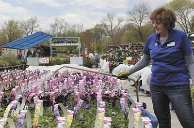 Gardeners find variety in Madison; Hanging baskets, patio pots ideal for Mother's Day