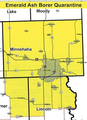 Don't transport firewood in South Dakota
