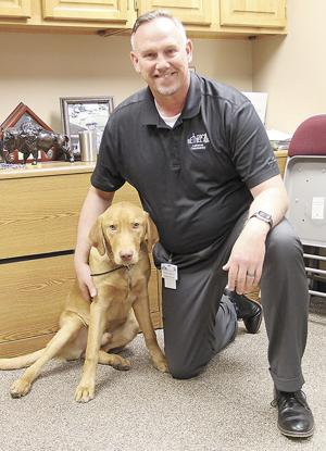 Bethel CEO training lab to become therapy animal
