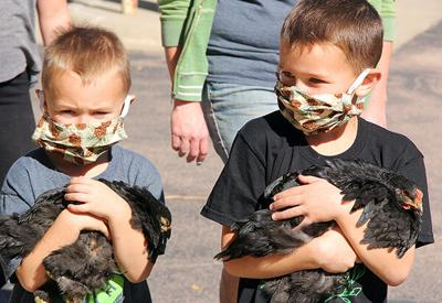4-H Week culminates in pet parade at Bethel