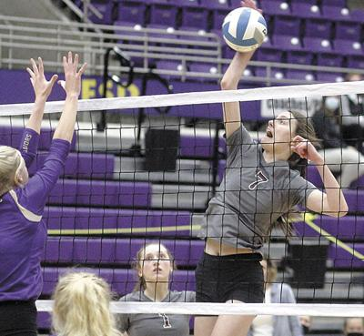 Lady Bulldogs regroup and place fifth in State A Tournament