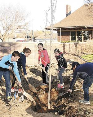 Madison holds Arbor Day event