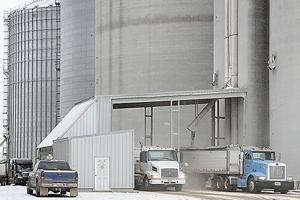 Grain harvest continues