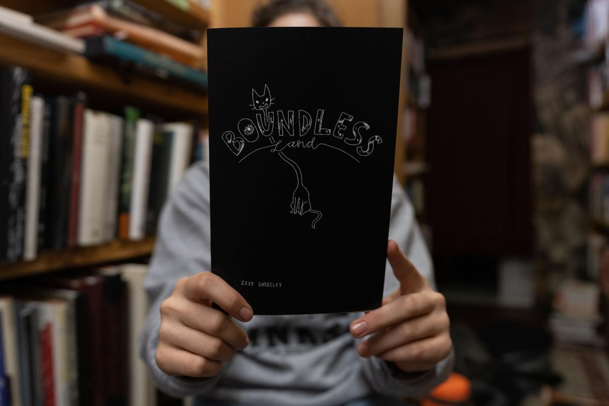 """Izzy Sheesley's """"Boundless Land"""" Book Cover"""