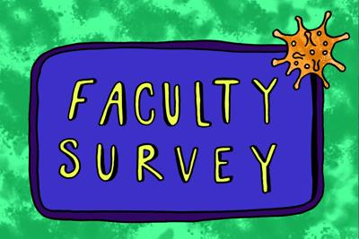 Faculty Survey