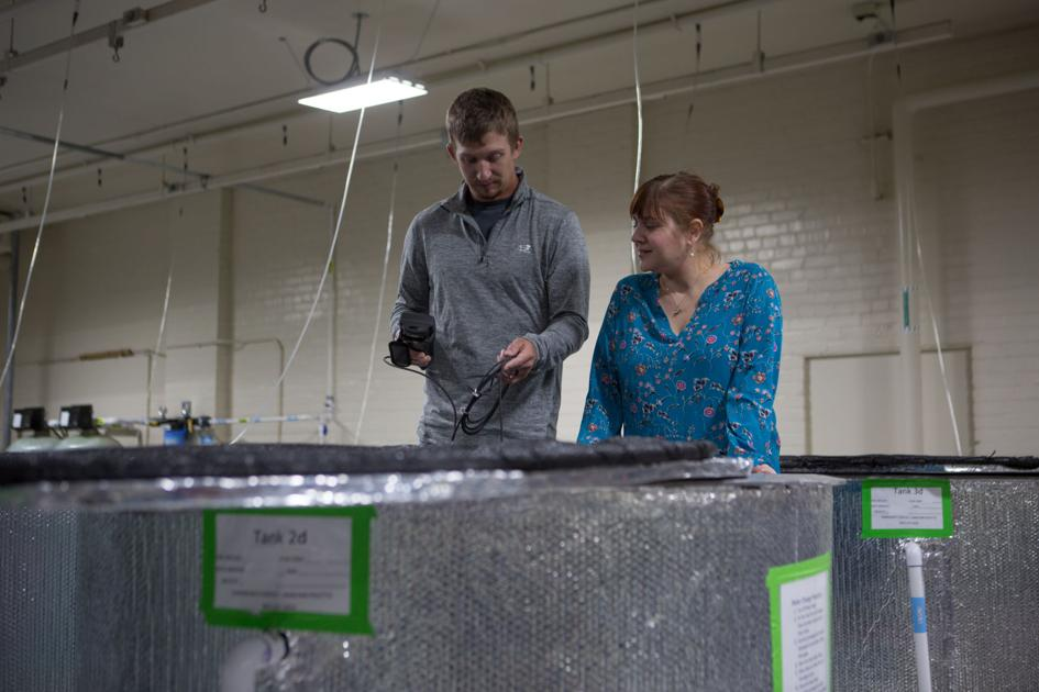 Unl East Campus Fish Lab Offers Students Researchers Unique