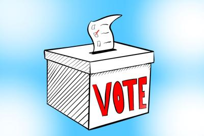 n-votinginfo