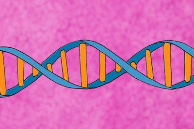 n-DNAgrant