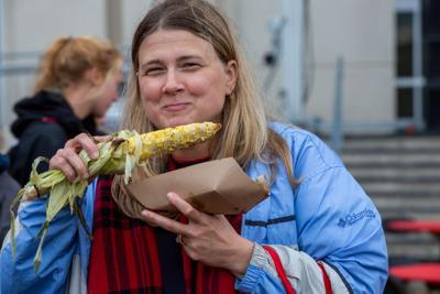 Cornstock corn photo