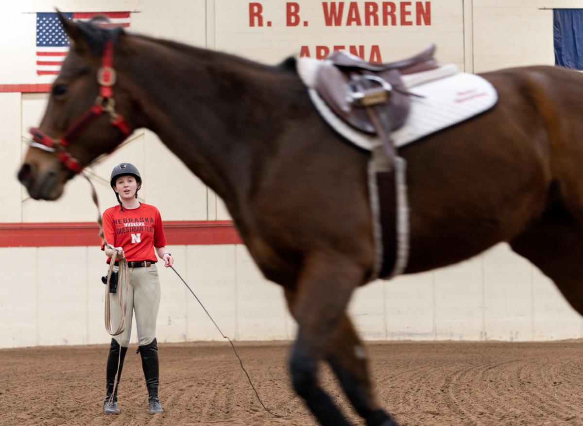 Horseback Riding Photo No. 3