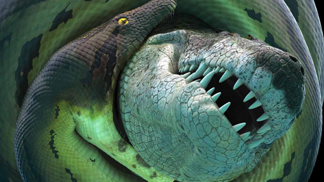 Titanoboa World S Largest Snake Replica Comes To Morrill