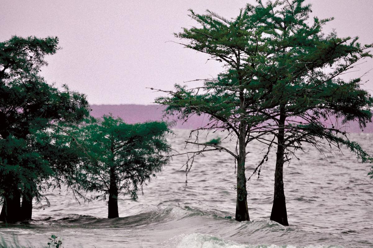 Toledo Bend Lake