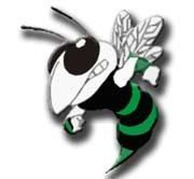 Hemphill Hornets, logo