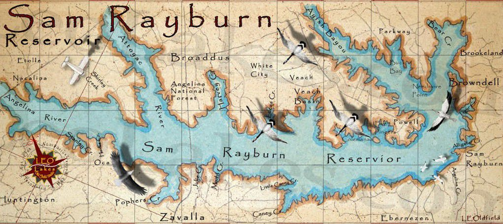 Sam Rayburn vintage map