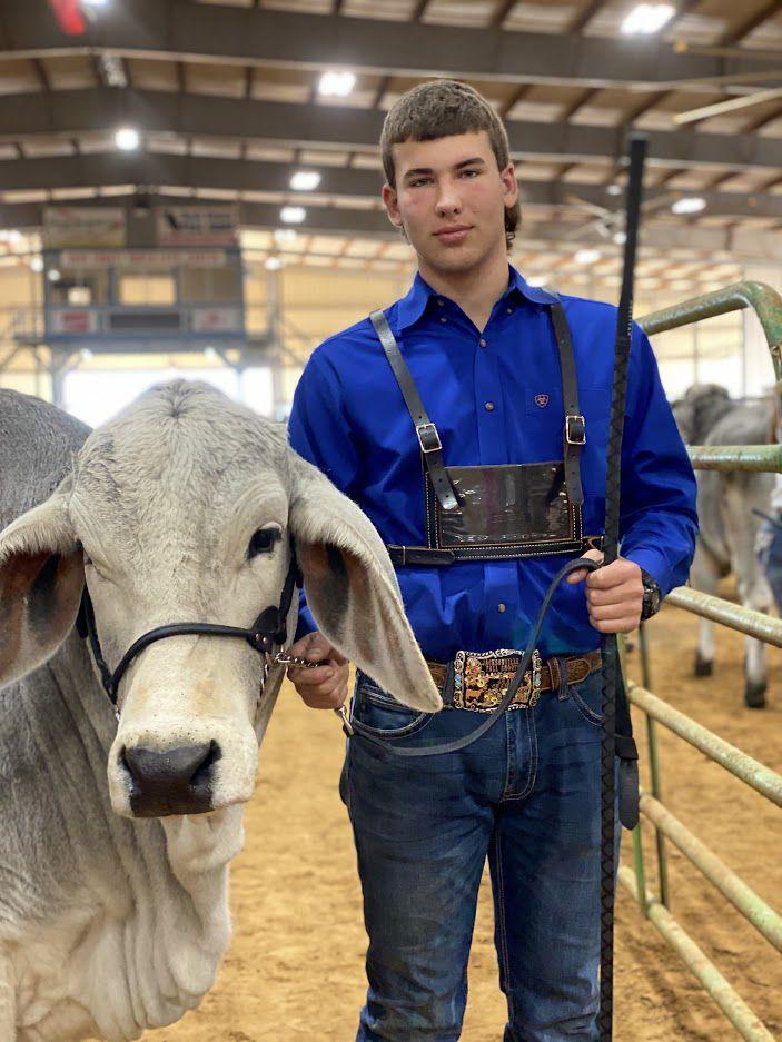 Bret Procella and his heifer Mattie
