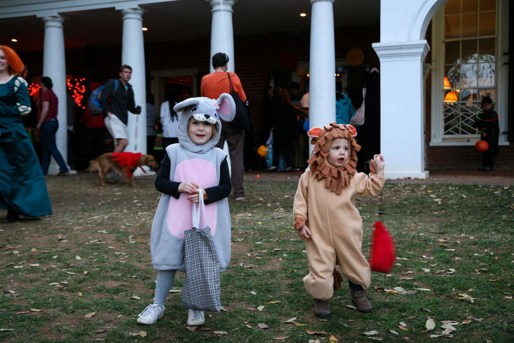 Trick Or Treating On The Lawn 16