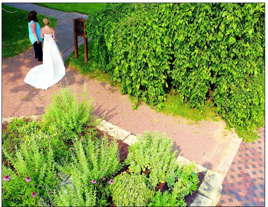 Risking bridal showers | | dailyprogress.com