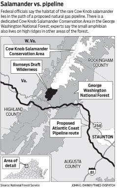 Salamander-pipeline map