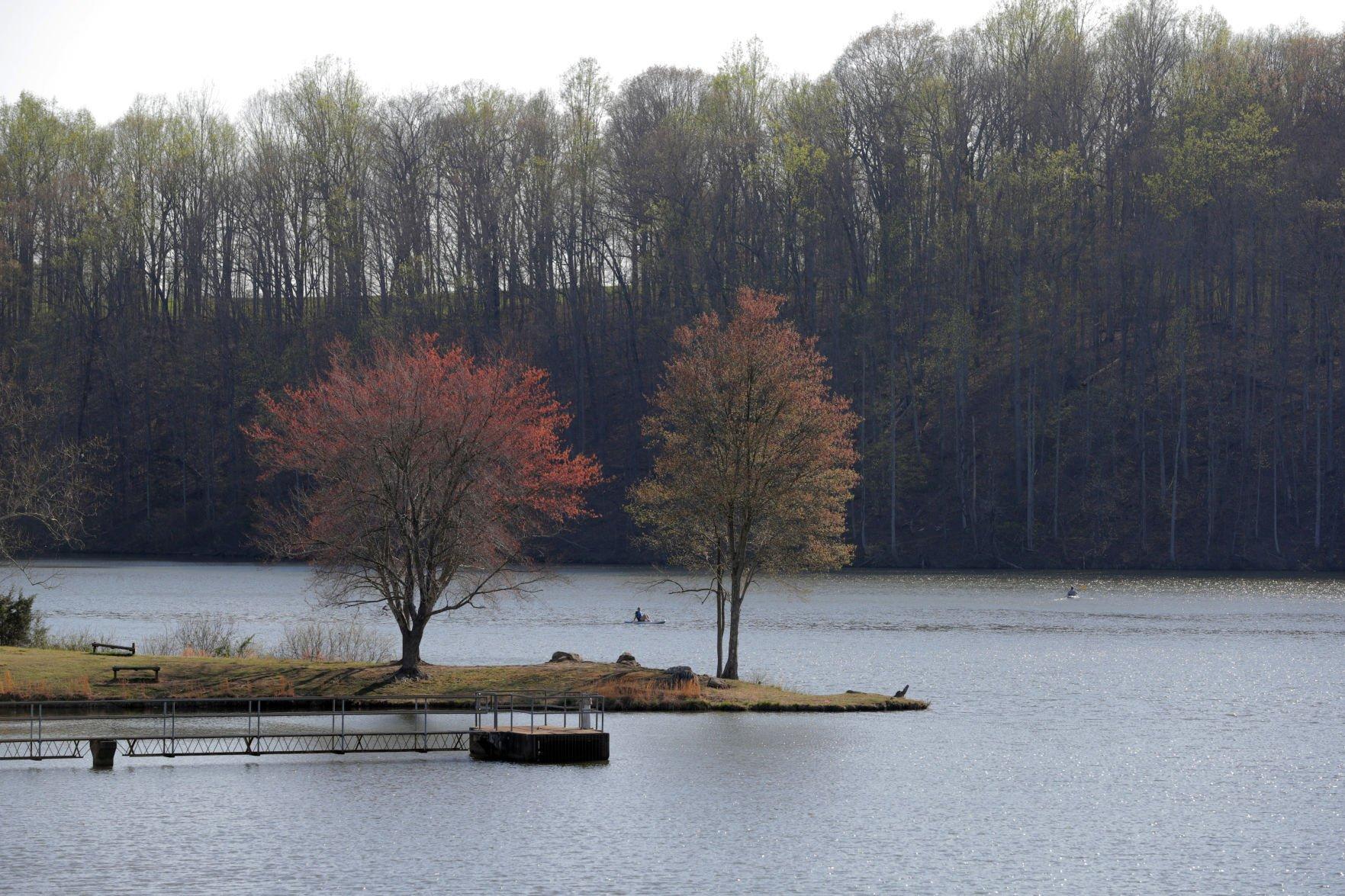 Four Kansas lakes under blue-green algae Warning
