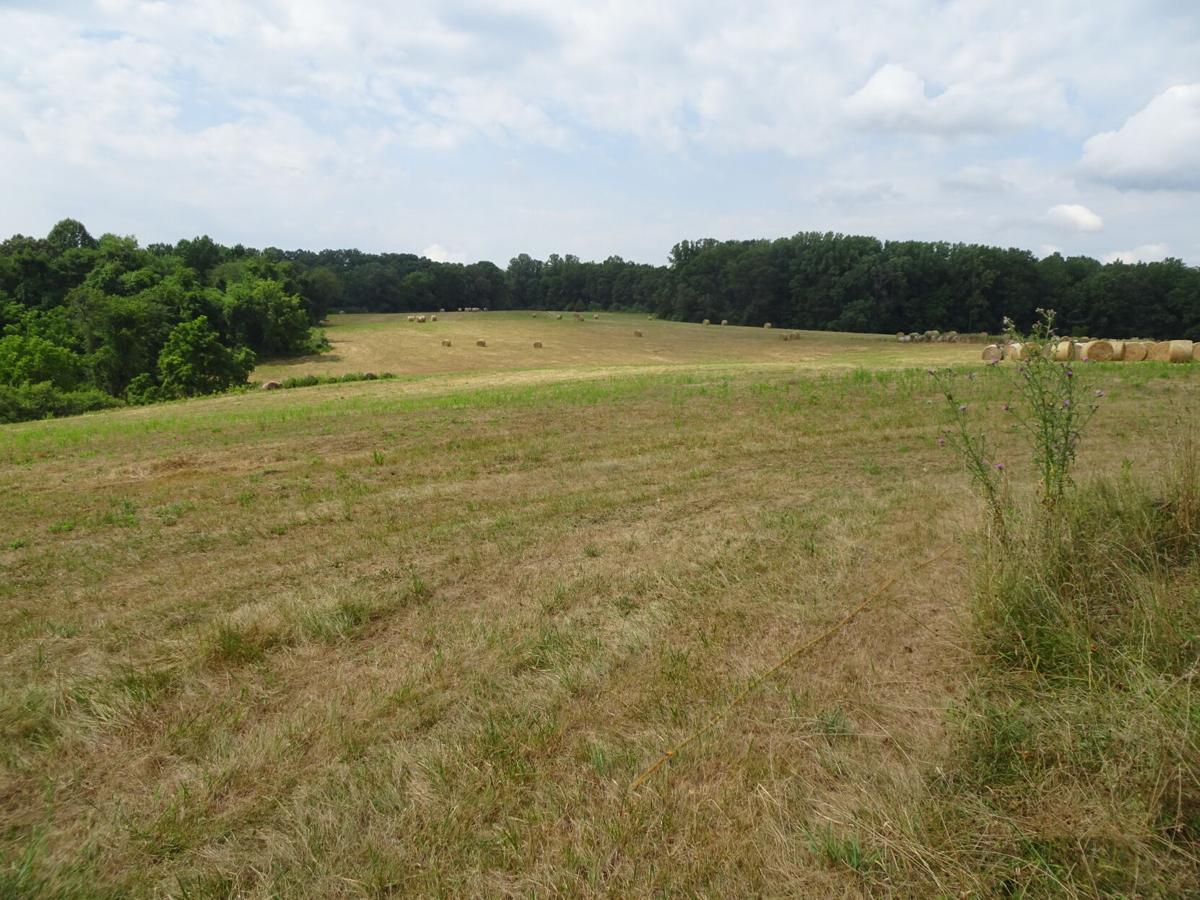 Panorama Farms
