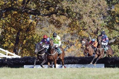 Montpelier Hunt Races 2019