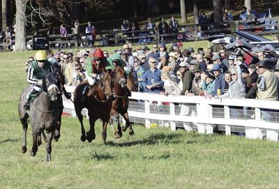 Horses ready for Nov. Montpelier Hunt Races