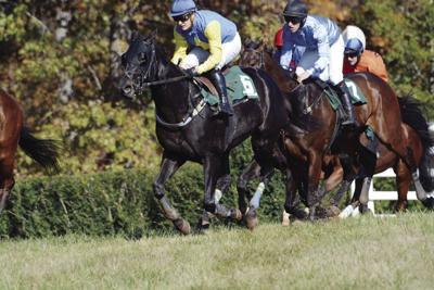 Montpelier Hunt Races canceled for 2020