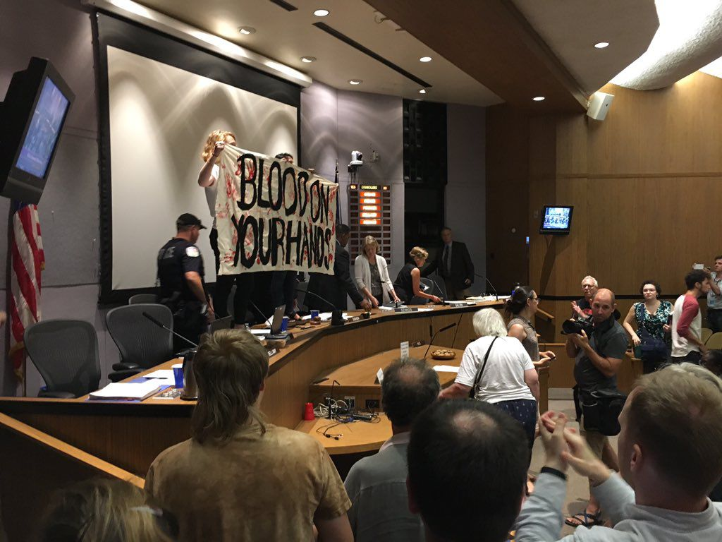 Protesters take over Charlottesville City Council meeting