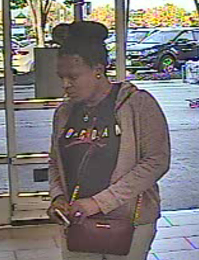 Two women sought in theft from vehicle