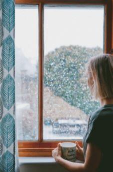 Weatherizing Your Old Single Pane Windows Realestate Dailyprogress