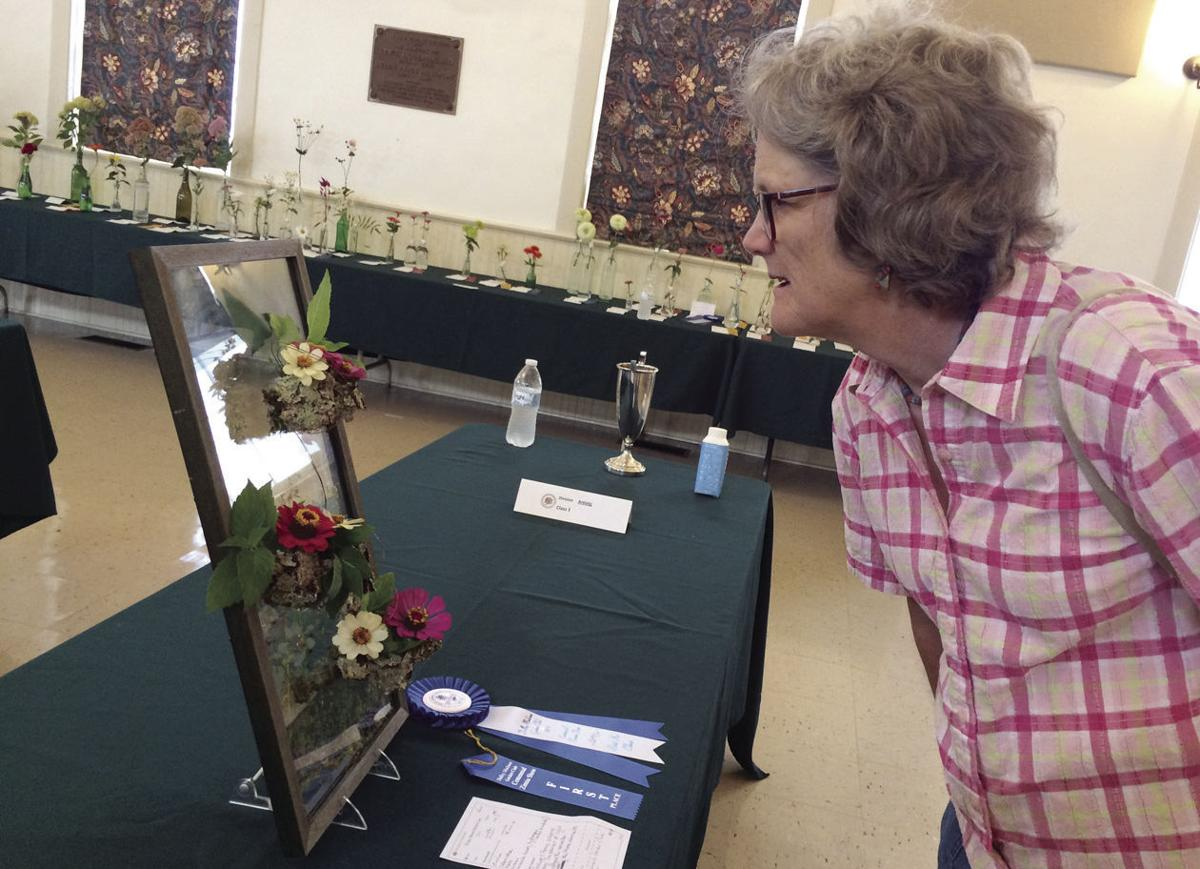 HH-DMGC-zinnia show_4 Marcia Colby of Orange, first-time flower show visitor, admires a top prize-winner.jpg