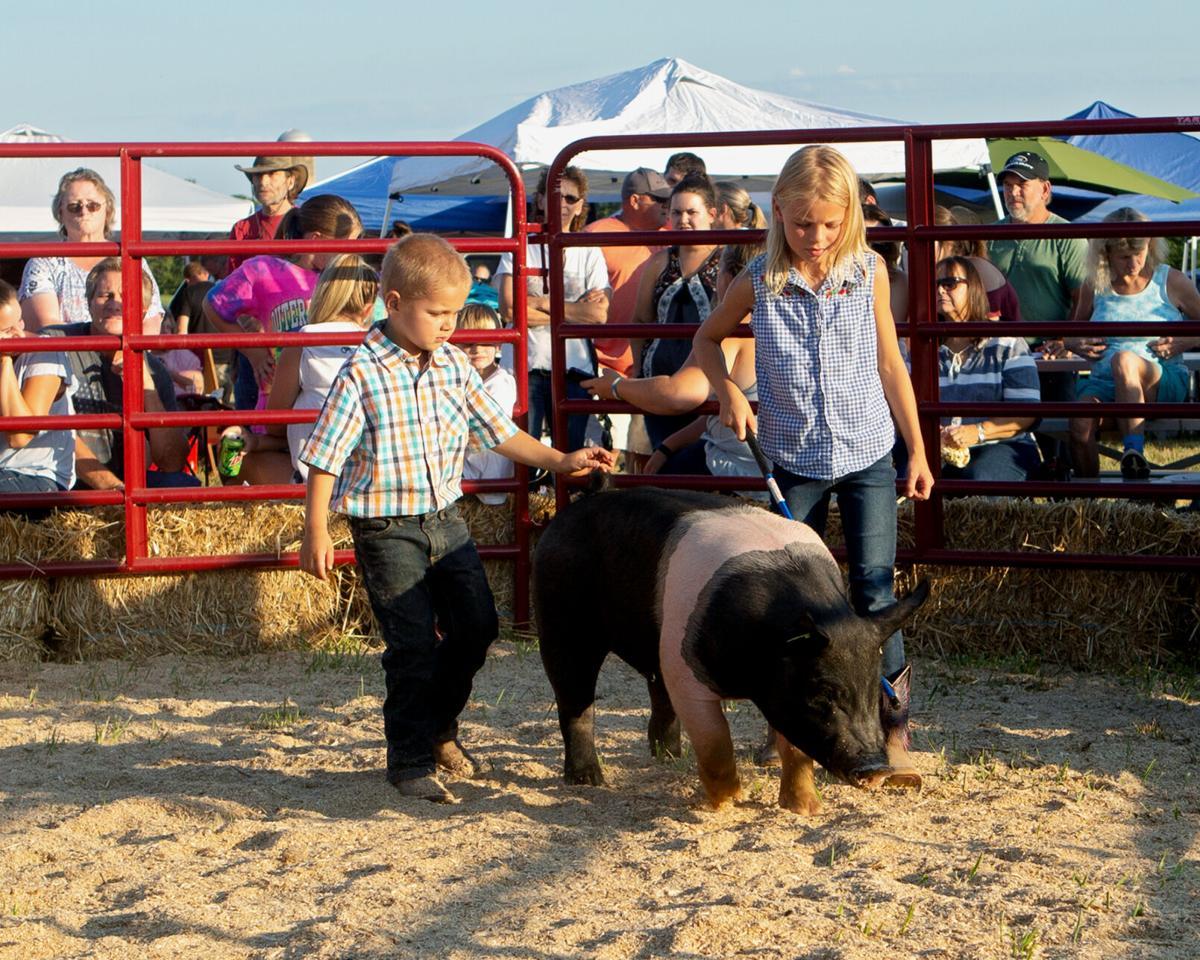 Greene Farm & Livestock Show opens next week