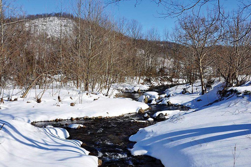 Snow-Mike Sacco-stream.jpg