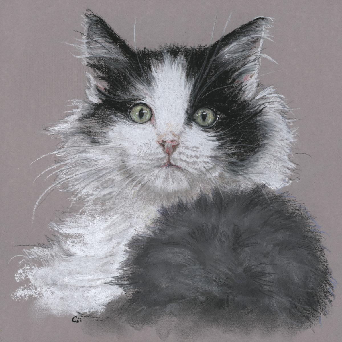Artist in Residence: meet Cat Denby