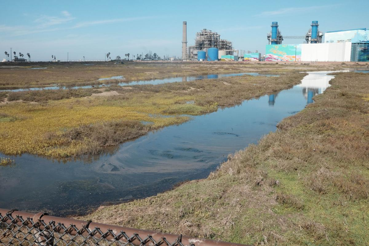 Oil spill reaches marshlands