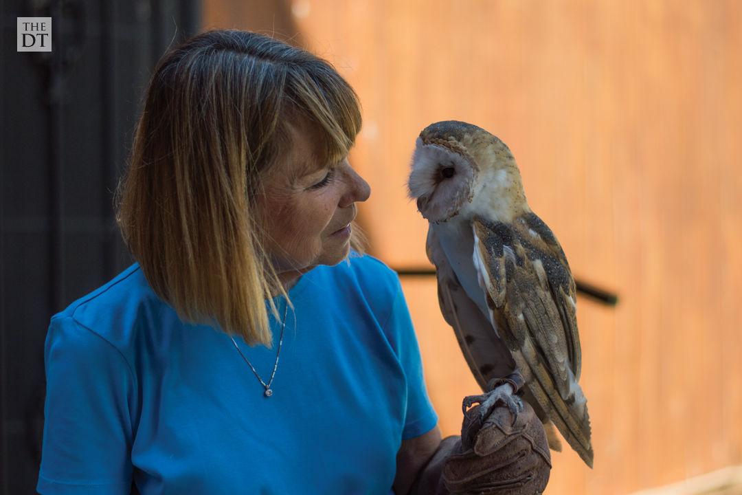 South Plains Wildlife Rehabilitation Center