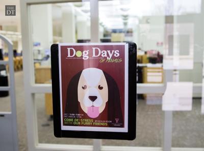 Dog Days of Finals
