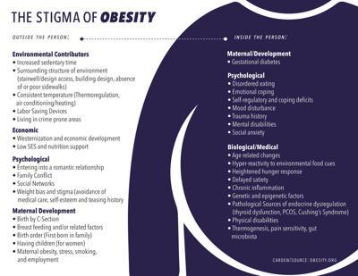 Obesity Caused By Often Overlooked Internal External Factors News Dailytoreador Com