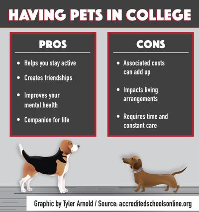 Benefits of owing a pet