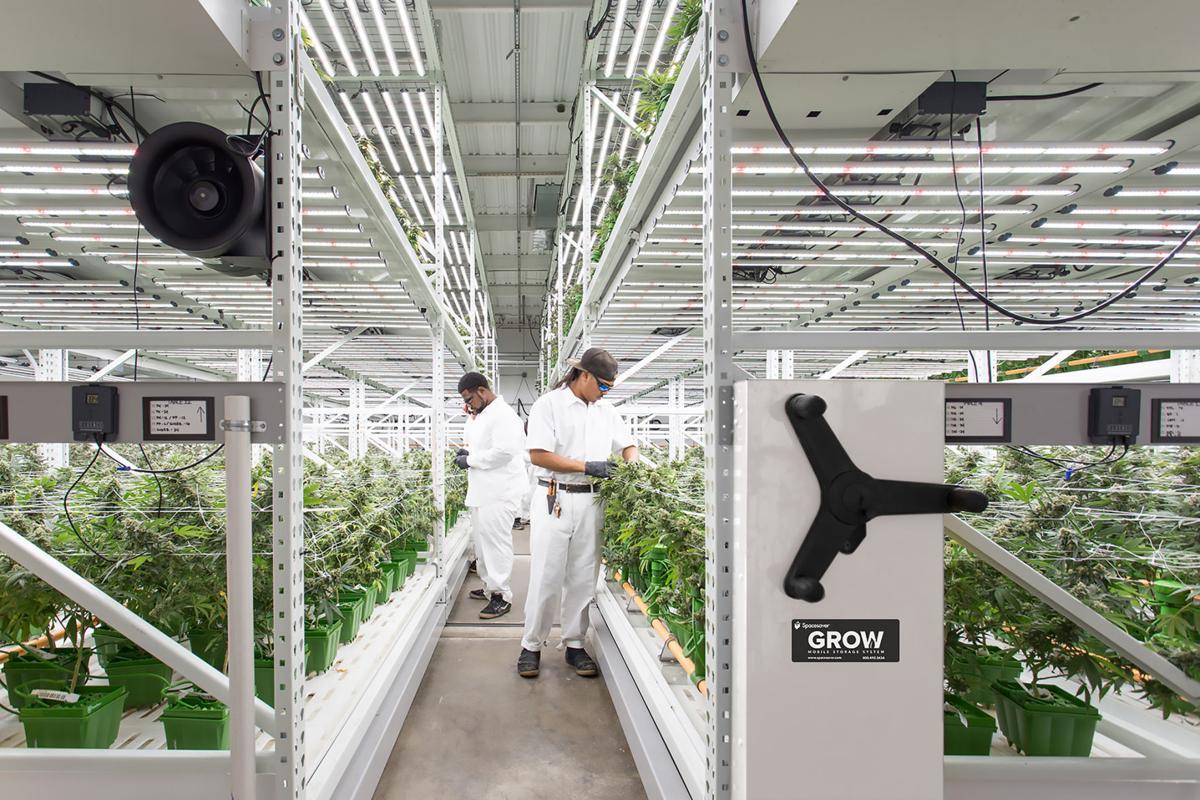 GROW system