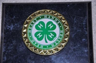 4-H symbol