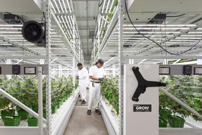 Spacesaver GROW system