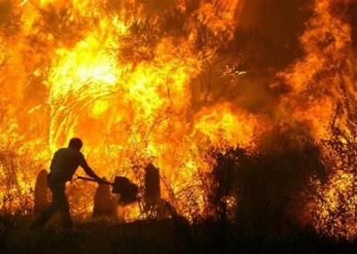 Wildfire-or-Forest-Fires-10