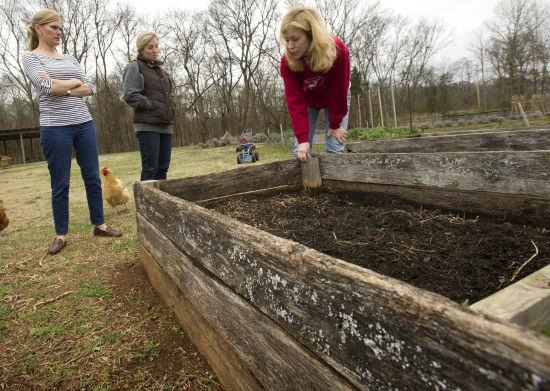Spring Summer Gardens Get Easier With Raised Beds Living