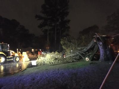 Storm causes power outages, topples tree