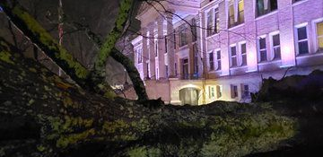 Tree down at Limestone County Courthouse